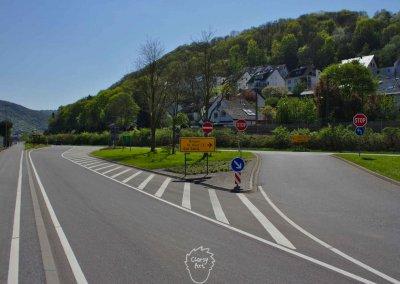 Etwa 600 km geht es am Rhein entlang Richtung Süden...