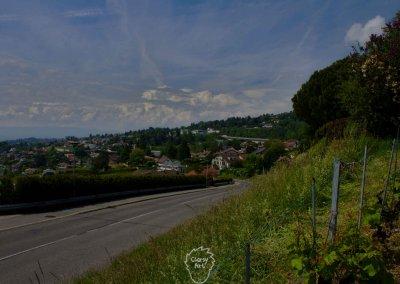 ...Bis nach Lausanne...