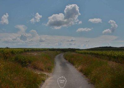 Eine der ruhigen Landstraßen unter strahlend blauem Himmel...