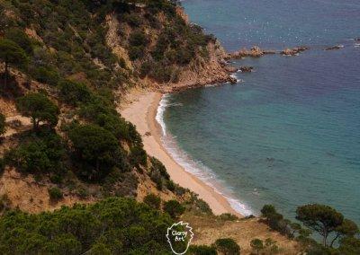 In Spanien erwartet mich die wunderschöne Küstenlandstraße an der Costa Brava...