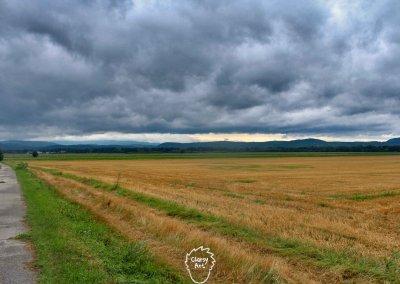 Weiter geht es entlang der Donau über Feld-, Wald- und Wiesenwege durch die Slowakei...